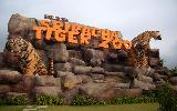 Arrive Bangkok - transfer to Pattaya - Sri Racha Tiger Zoo with Breakfast - Optional Tour to Nong Nooch Village